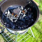 Barbecue charcoal in fire, preparing for grilling  — Stock Photo