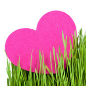 Love card decorated with heart on green grass — Stock Photo