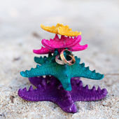 Rings on starfishes in tropic paradise. Wedding Vacation concept — Foto Stock