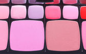 Make-up blush palette — Stock Photo