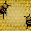 Two bees — Stock Photo
