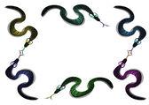 Sechs Schlangen — Stockfoto