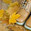 Stock Photo: Leather shoes and yellow leaves