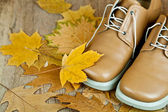 Leather shoes and yellow leaves — Stock Photo