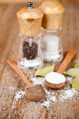 Salt and pepper — Stock Photo
