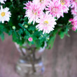 Pink chrysanthemum in glass vase — Stock Photo
