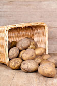 Basket with fresh potatoes — Stock Photo