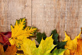 Folhas de outono sobre fundo de madeira — Foto Stock