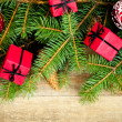 Fir tree with decoration — Stock Photo