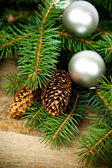 Christmas fir tree with decoration — Stock Photo
