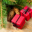 Fir tree with pinecones and decorative boxes - Stock Photo