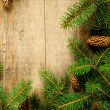 Christmas fir tree with pinecones - Stock Photo