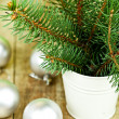Christmas fir tree and white decorations — Stock Photo