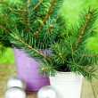Buckets with christmas fir tree and decorations — Stock Photo