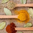 Three spices in wooden spoons and bay leaves - Stock Photo
