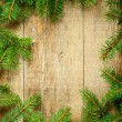 Christmas fir tree frame — Foto Stock