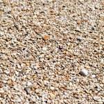 Pebbles on a beach — Stock Photo #27623369