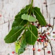 Fresh laurel and peppercorns — Stock Photo