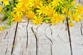 Yellow flowers closeup on rustic wooden background — Stock Photo