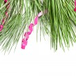 Fir tree branch with serpentine — Stock Photo #33430717