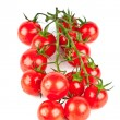 Fresh organic cherry tomatoes — Stock Photo