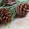 Stock Photo: Christmas fir tree with pinecones