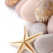 Pile of stones, shells and sea star — Stock Photo