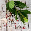 Twig of fresh laurel and peppercorns — Stockfoto
