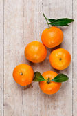Five tangerines with leaves — Stockfoto