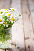 Chamomile bouquet in jar  — Stock Photo