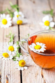 Cup of tea with chamomile flowers  — Stock Photo