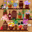 Flower pots on wooden shelves — Stock Vector