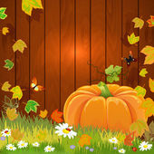 Autumn still life with pumpkin for your design — Stock Vector
