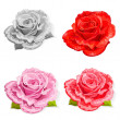 Set rose isolated - Stockvectorbeeld