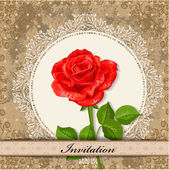 Card design with rose vintage — Vettoriale Stock