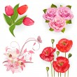 Set of isolated flowers for your design — Stock Vector