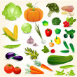 Set of fresh vegetables for your design — Stock Vector