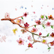 watercolor cherry blossom — Stock Photo