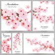 Set of floral cards for your design — Stok Vektör