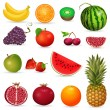 Set of juicy fruit isolated — Stock Vector