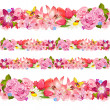 Seamless border of beauty flowers. Set — Stock Vector #39603169
