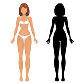 Female body template — Stock Vector