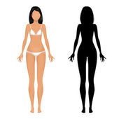 Female body template — Stock Vector