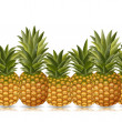 Постер, плакат: Border of pineapples