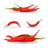 Red chili pepper — Vector de stock
