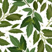 Liść laurowy tekstura — Wektor stockowy