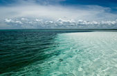 The ocean coast — Stock Photo
