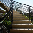 Stock Photo: Ladder with openwork forged handrail