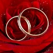 Stock Photo: Flower a rose, two wedding rings