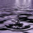 Drop and ripples in the water — Stock Photo